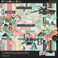 Collecting Memories By Bekah E Designs