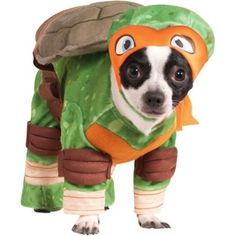 Finally a MichaelAngelo Ninja Turtle costume for Copper!