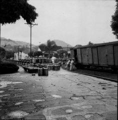 São João Nepomuceno -- Estações Ferroviárias do Estado de Minas Gerais