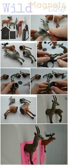DIY: Imanes Salvajes / Wild Magnets. Magnets.