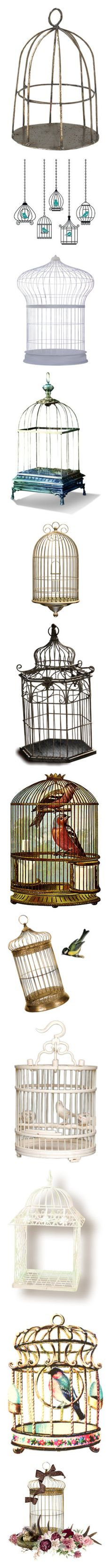 """""""Cages"""" by jaja8x8 ❤ liked on Polyvore featuring fillers, birds, cages, birdcages, decor, backgrounds, drawings, decoration, doodles and effects"""