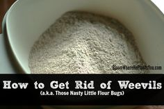 how to get rid of bugs in rice and flour