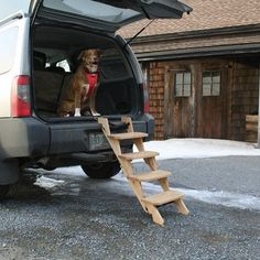(Limited Supply) Click Image Above: Kurgo Up-pup Stairs - Kurgo Tailgate Step Ladder For Dogs - Dog Ramps Boat Storage, Vehicle Storage, Trailer Storage, Truck Storage, Easy Storage, Dog Ramp For Car, Tailgate Step, Dog Stairs, Best Dog Training