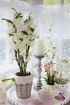 Een Romantisch tafereel: kant, wit en roze. Helemaal mijn stijl! #pintratuin