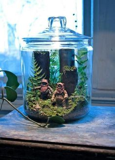 Since I wanted to make a terrarium for my desk at work anyway this seems ideal...