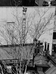 .Ladder - Photo André Kertész