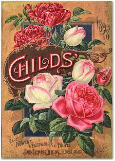 Vintage Childs' seed catalog (1898)