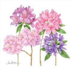 http://www.geocities.jp/walljp2020/flower/Jan-Harbon-14.jpg
