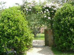 Garden - Crepe Farmhouse