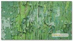 99-free-canvas-paper-paint
