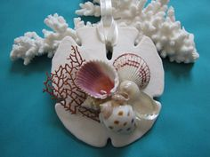 Sand Dollar Shell Ornament Seashell Ornament by TheSleepySeahorse