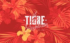 Branding Tigre de Revolución. on Behance