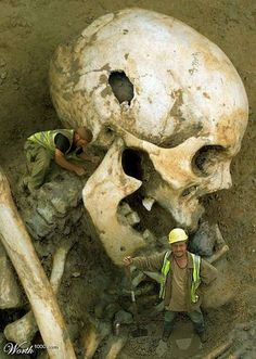 Giant Skull Dug Up In Spain