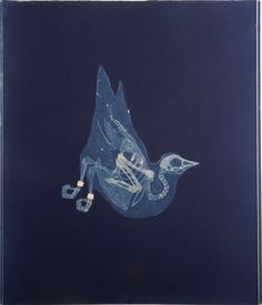 Pigeon ~ Carrie Witherell cyanotype from Relics series