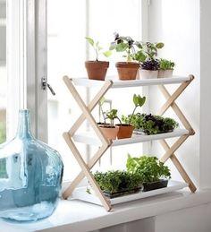 etagere à plantes