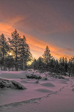 Scene in the Sierra Nevada outside of Reno, Nevada. Picture taken at sunrise. Scenery Pictures, Nature Pictures, Beautiful Pictures, Landscape Photography, Nature Photography, Dame Nature, Dawn And Dusk, Winter Love, Winter Scenery