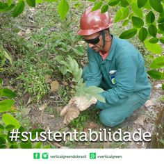 Uma empresa consciente se constrói com ações sustentáveis com a preservação do meio ambiente e sobretudo com respeito aos seus colaboradores! (y) Conheça o trabalho da Vertical Green em nosso site: http://ift.tt/1qGXyzA #sustentabilidade ##respeito #meioambiente #verticalgreen #verticalgreendobrasil by verticalgreendobrasil http://ift.tt/1Wfwnd1