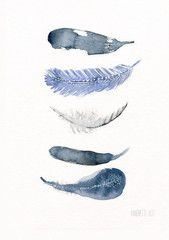 Print - Five Blue Feathers – Stilleben