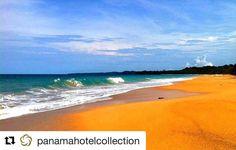 #Repost @panamahotelcollection  Enjoying this Caribbean paradise courtesy of Gran Hotel Bahia.  Disfrutando de este paraíso caribeño cortesía de Gran Hotel Bahía.  For more info: info@panamahotelcollection.com #GranHotelBahia #bocasdeltoro #panamahotelcollection #phc #vistpanama #vacactioninpanama #panamahotels #vacation2016  #caribbeansea #caribe #mar