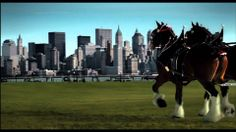 #NeverForget definitely words to change the world. 9/11 Budweiser Commercial - Only aired once