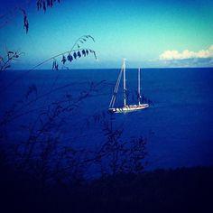 #sicily #siciliabedda #mare #sea #summer #zingaro #riserva barca #blueeyes #nature #dream #happy #paesaggio #love #instagood #instalike #instagram #instafollow #instaphoto #instatravel #travel #viaggiare #tramonto #imbrunire #poesia by rita_tartamella85