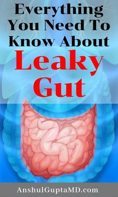 Everything You Need To Know About Leaky Gut Low Carb Diets, Gut Health, Health Tips, Kidney Health, Health Benefits, Leaky Gut Diet, Leaky Gut Syndrome, Tasty, Yummy Food