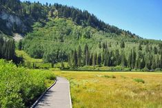Silver Lake Loop is a boardwalk trail that's well suited to just about anyone, and it's surrounded by the spectacular scenery of Big Cottonwood Canyon. Silver Lake Utah, Lake George Village, Cottonwood Canyon, Summer Vacation Spots, Colorado Hiking, Lake Life, Cool Places To Visit, The Great Outdoors, Saint James