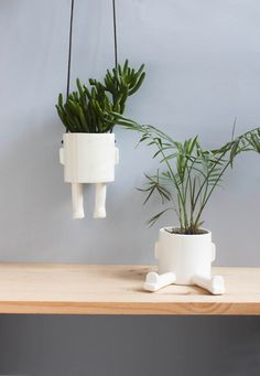 Copy of Pack of 2 planters: 1 Sitting and 1 Hanging 10% off ! Special Christmas