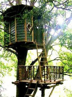 The Flying Tortoise: The Treehouses Of Japanese Designer Carpenter Tokashi Kobayashi / The Green Life