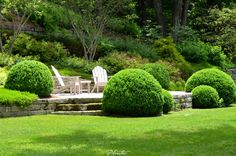 American boxwood rounds surround this terrace overlook.  A Planters design.  Highlands, NC