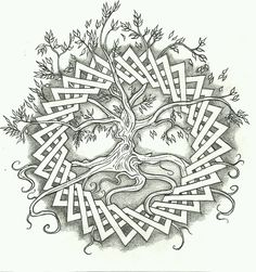 29 Best Coloring Pages Tree Of Life Images Coloring Pages