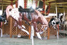 Carousel Fair Rides, Rodeo Girls, Painted Horses, Horse Mane, Go Ride, Rocking Horses, Wooden Horse, Painted Pony, Merry Go Round