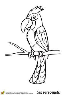 Coloriage d'un perroquet avec houpette Bird Drawings, Line Patterns, Art Plastique, Tigger, Embroidery Designs, Disney Characters, Fictional Characters, Cute Animals, Artsy