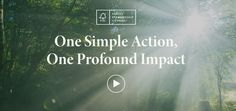 Forest Stewardship Council, You Choose, Forests, Action, Weather, Health, Group Action, Health Care, Woodland Forest