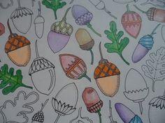 Colorindo Pinhas no Livro Floresta Encantada - Johanna Basford (Parte 2)