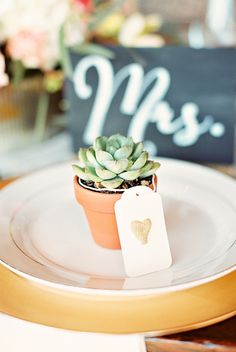 succulent place card ideas // photo and styling by Kina Wicks