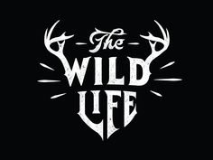 thewildlife_wildyr.jpg