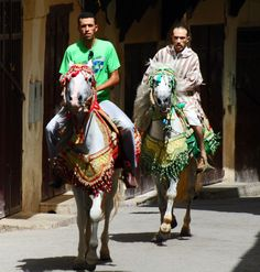 THE VIEW FROM FEZ: Rare sight - Horses in the main street of Fez Medina