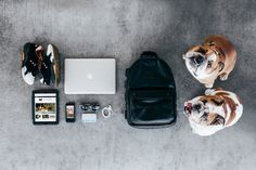 Essentials: Ajay Bouri of Feature Sneaker Boutique