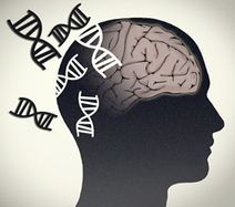 Alzheimer's disease: Putting the pieces together with integrative genomics