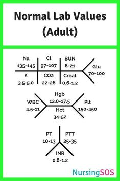 Normal Lab Values Yo Normal Lab Values You Need to Know in Nursing School. Click through to get this FREE printable. Take this Normal Lab Values cheat sheet with you to clinical and be a nursing school rockstar! Nursing Lab Values, Nursing Labs, Cardiac Nursing, Pharmacology Nursing, Funny Nursing, Nclex Lab Values, Nursing Degree, Pathophysiology Nursing, Neonatal Nursing