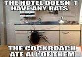 Rottavapaa hotelli