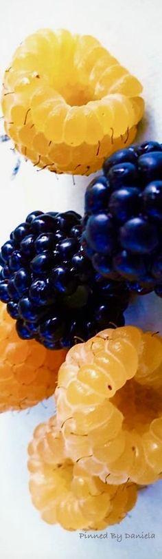 Fruit Splash, Theme Pictures, Fruit Of The Spirit, Love And Light, Fresh Fruit, Blue Yellow, Berries, Peach, Fish