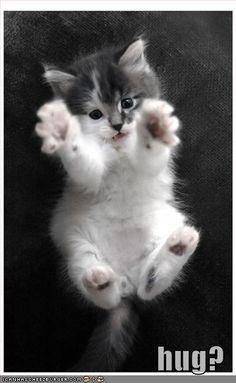 Aww!! It's so cute!!