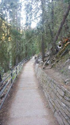 Johnston Canyon, Sidewalk, Side Walkway, Walkway, Walkways, Pavement