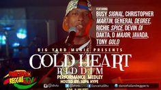 Cold Heart Riddim Peformance Medley Video ▶Big Yard Music ▶Reggae 2016