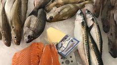 Le comptoir de la mer | Localiv.fr Fish, Counter Top, The Sea, Pisces