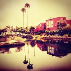 @Paula Stein's photo - venice beach canals