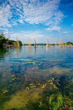 Kentucky:  A great place to relax along Cedar Creek Lake in Lincoln County.