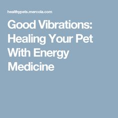 Good Vibrations: Healing Your Pet With Energy Medicine